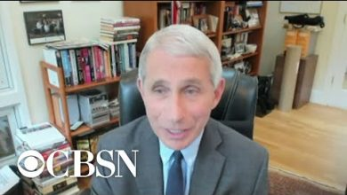 Photo of Dr. Anthony Fauci on the risks of reopening too fast