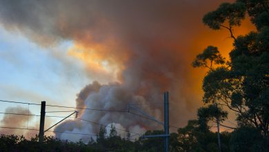Photo of Australia: Bushfires