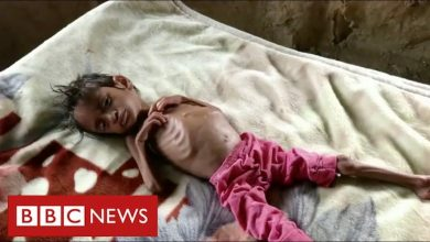 Photo of Millions of children face starvation in Yemen warns United Nations – BBC News
