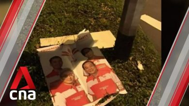 Photo of Singapore GE2020: 2 under investigation for damaging election posters