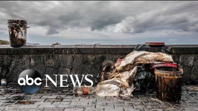 Photo of Oil spill, coronavirus vaccine, Beirut aftermath: World in Photos, Aug. 11