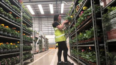 Photo of APHA launches first plant health apprenticeship scheme