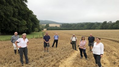 Photo of Five local authorities announced to trailblaze England's nature recovery pilots