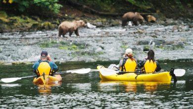 Photo of UnCruise Adventures Suspends 2020 Alaska Season After Guest Tests Positive