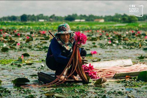 Udon Thani – Esaan Style Travel